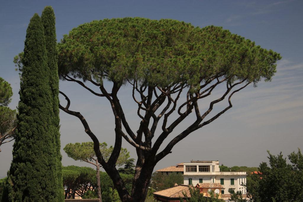 www.hakanaydın.com.tr ÇekerGezeR Hakan Aydın Mega İtalya Roma Castel Gondolfo