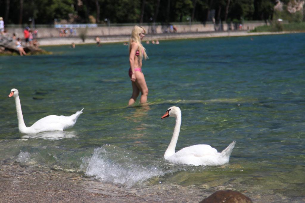 Mega Italya Garda Gölü Sirmione, Italya Scaliger Castle www.cekergezer.com Hakan Aydın ÇekerGezeR