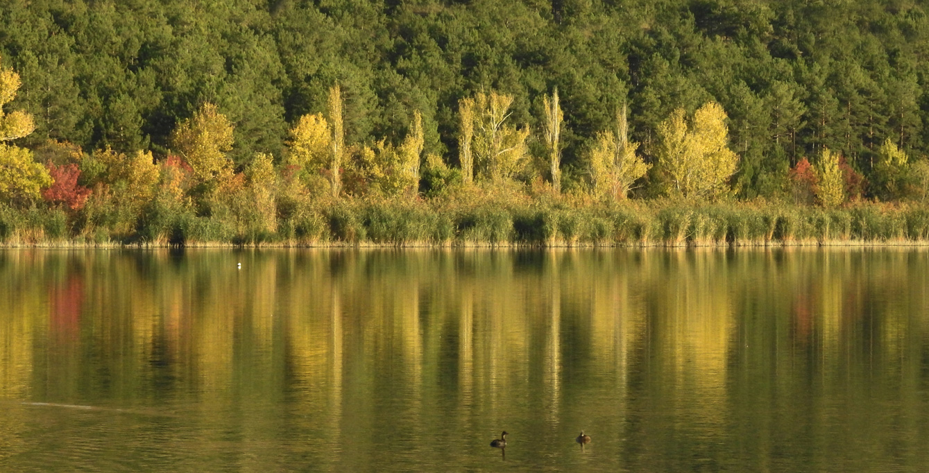 Eymir Gölü Fotoğrafları Ankara Türkiye Çekergezer Hakan Aydın www.hakanaydın.com.tr www.cekergezer.com