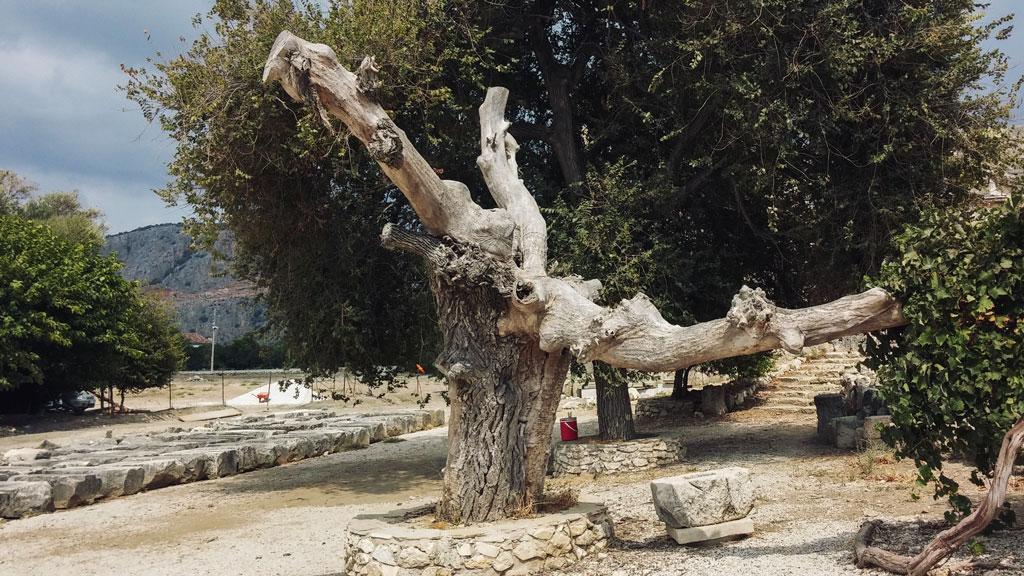 Letoon Antik Kenti Fotoğrafları Çekergezer Hakan Aydın Gezgin Fotoğrafçı www.hakanaydın.com.tr www.cekergezer.com