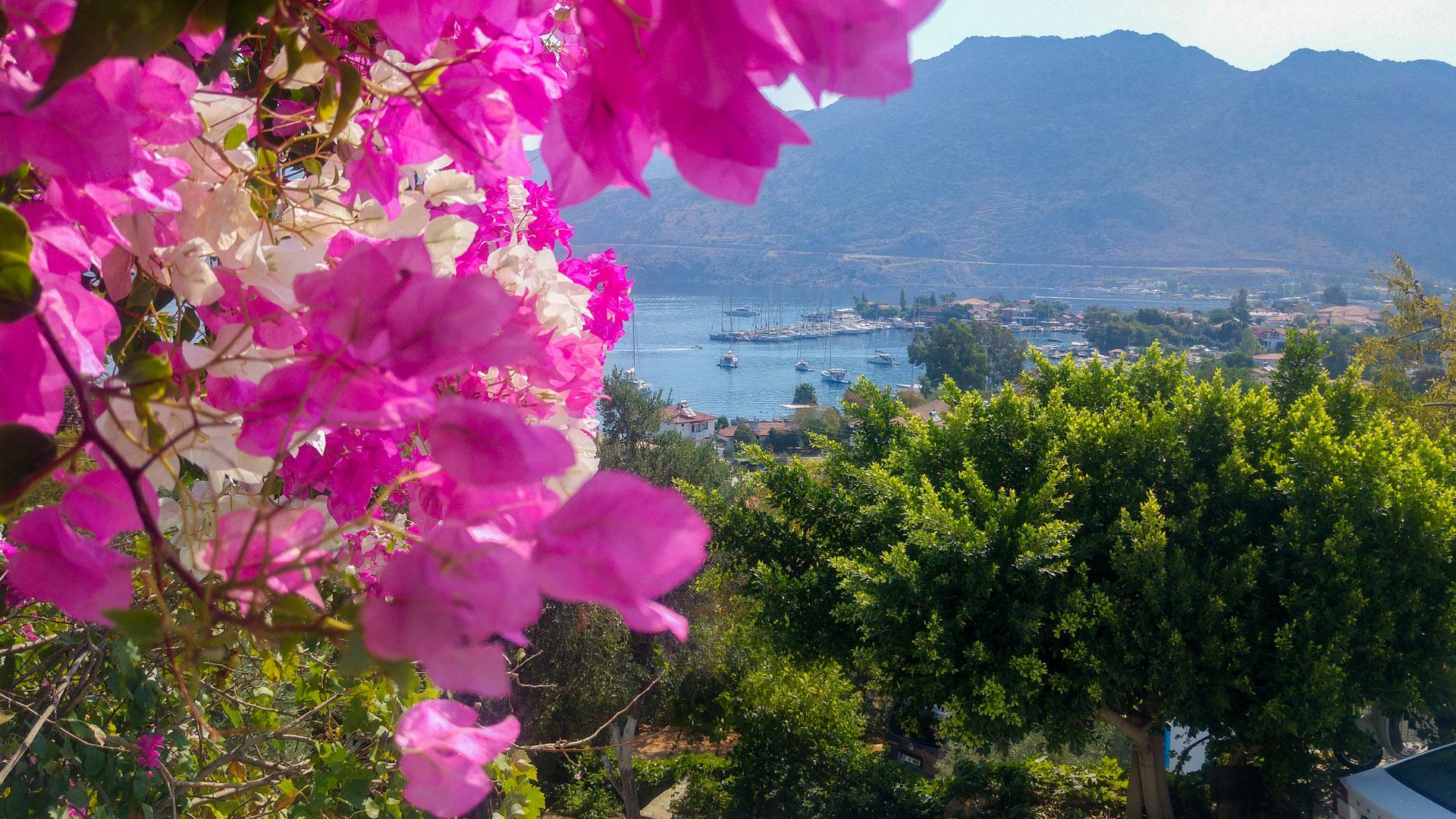 Flora Saadet Apart Balkon Manzarası Selimiye Marmaris