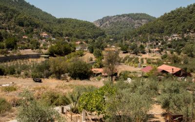 Bayır Köyü