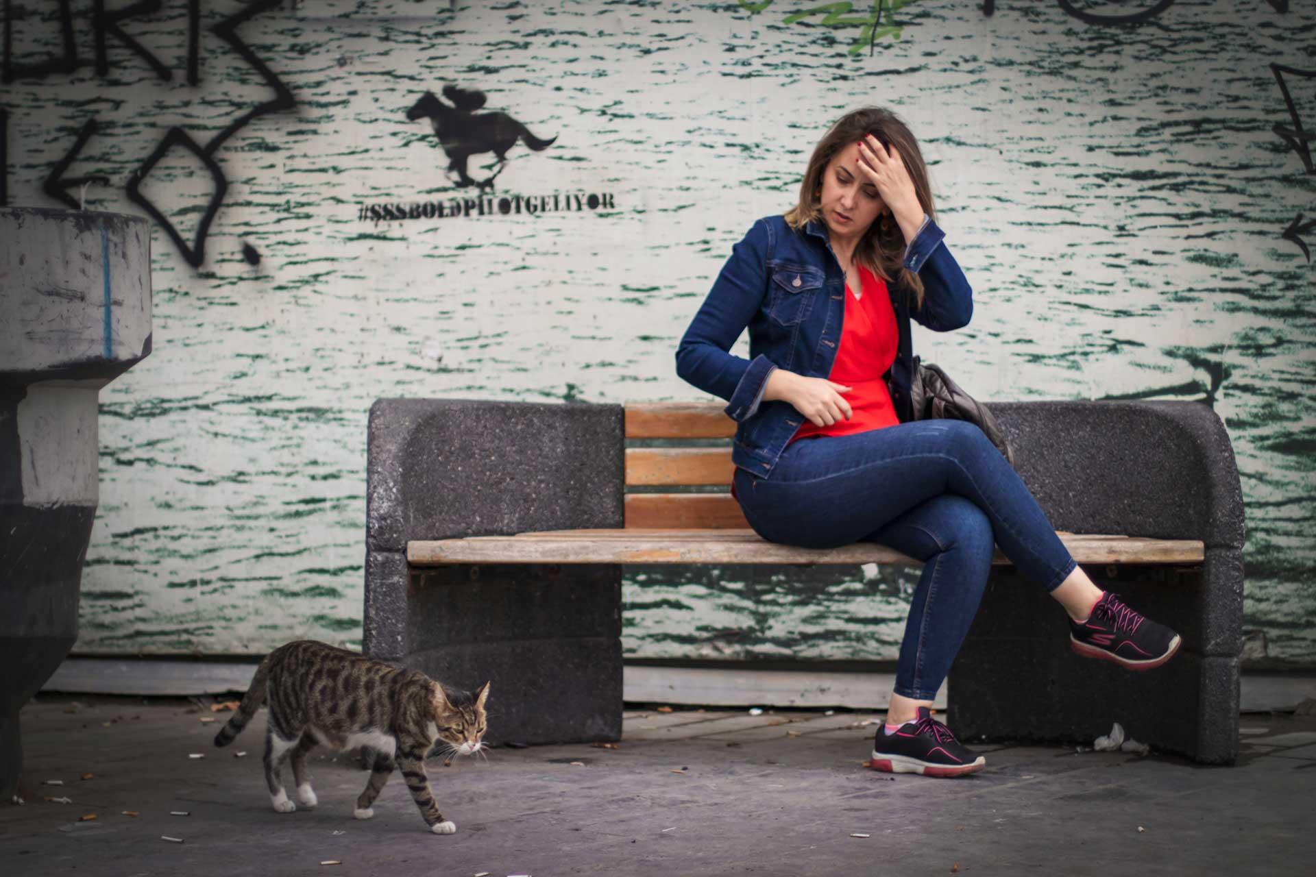 Karaköy insanlar ve kedi fotoğrafları  İstanbul Fotoğrafları Çekergezer Hakan Aydın Fotoğrafları www.cekergezer.com