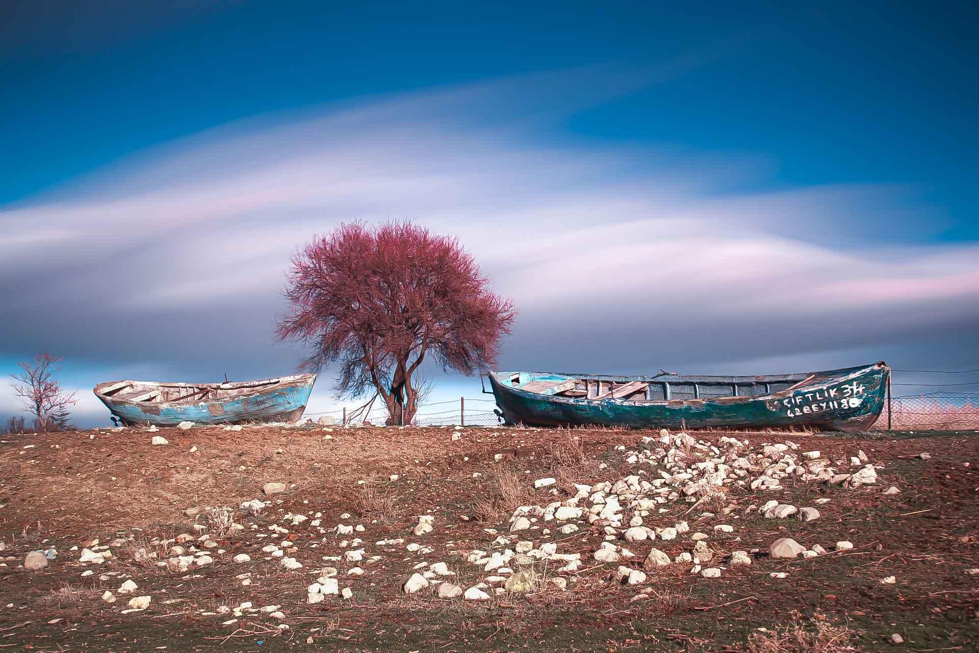 Beyşehir Fotoğrafları Tekne ve Ağaç Çekergezer Hakan Aydın Fotoğrafları